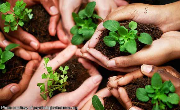 Dagupan S Malued Elementary Vies For Most Eco Friendly School In Ph